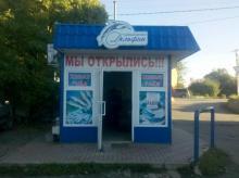 Дельфин,рыбный магазин